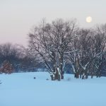 Full moon early on a snowy morning.